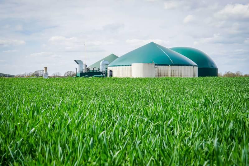 Blick über ein grünes Feld, mit den runden Türmen einer Biogasanlage im Hintergrund.